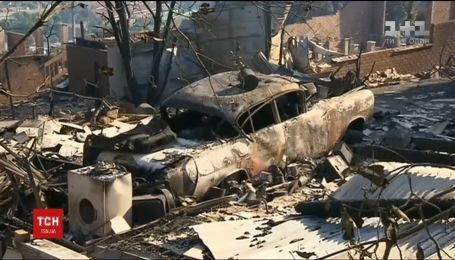 Австралію охопили масштабні лісові пожежі