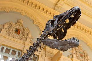 Дивовижне відкриття змінює погляд на історію: учені знайшли невідомого раніше динозавра-гіганта