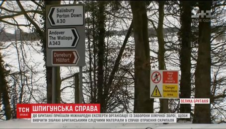 Отравление Сергея Скрипаля взялись расследовать международные эксперты