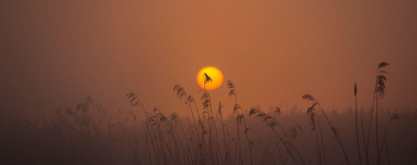 Избавьтесь от хлама и загадайте 9 желаний: что нужно делать в День весеннего равноденствия