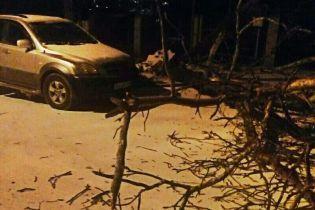 """На Луганщині випав помаранчевий сніг. В """"ЛНР"""" звинуватили американський безпілотник у хіматаці"""