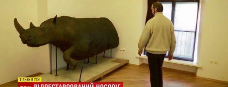Во Львове восстановили внешность волосатого носорога, который когда-то давно бродил по Карпатам