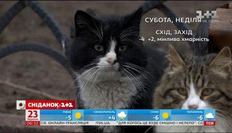 Якої погоди чекати на вихідні в Україні