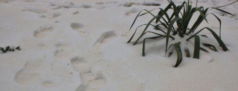 """В Одесі та області випав """"іржавий"""" сніг"""