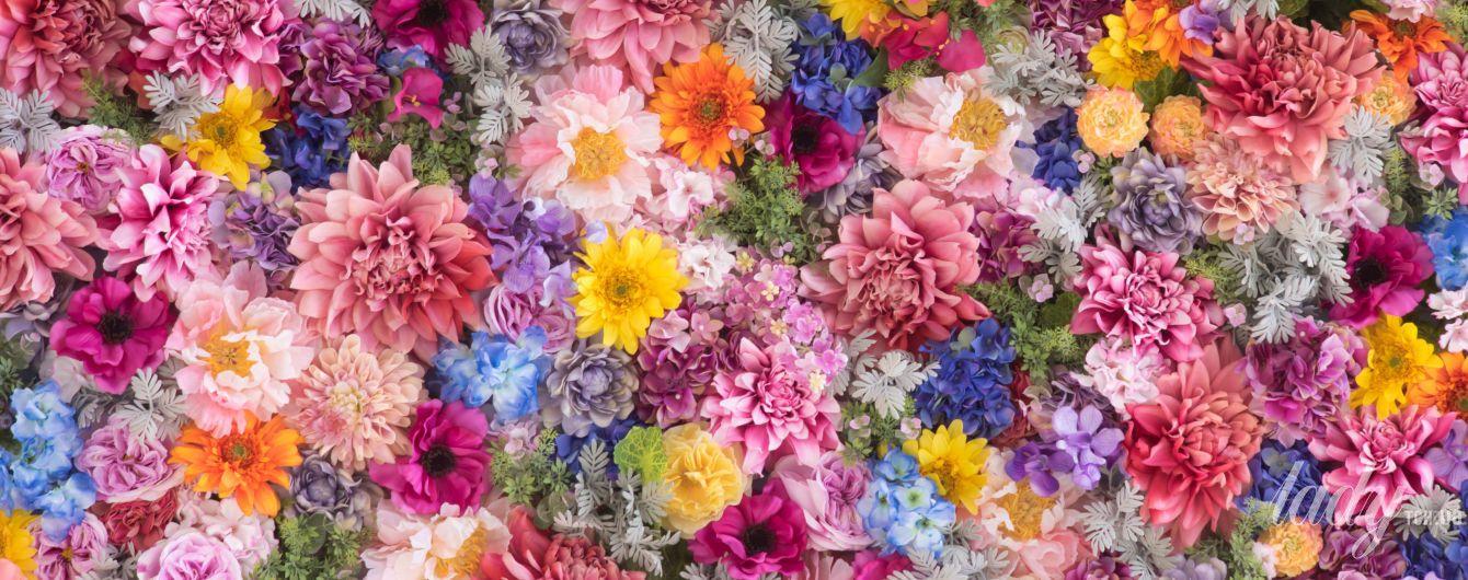 Полякова, Могилевская, TAYANNA - кто станет королевой Бала цветов
