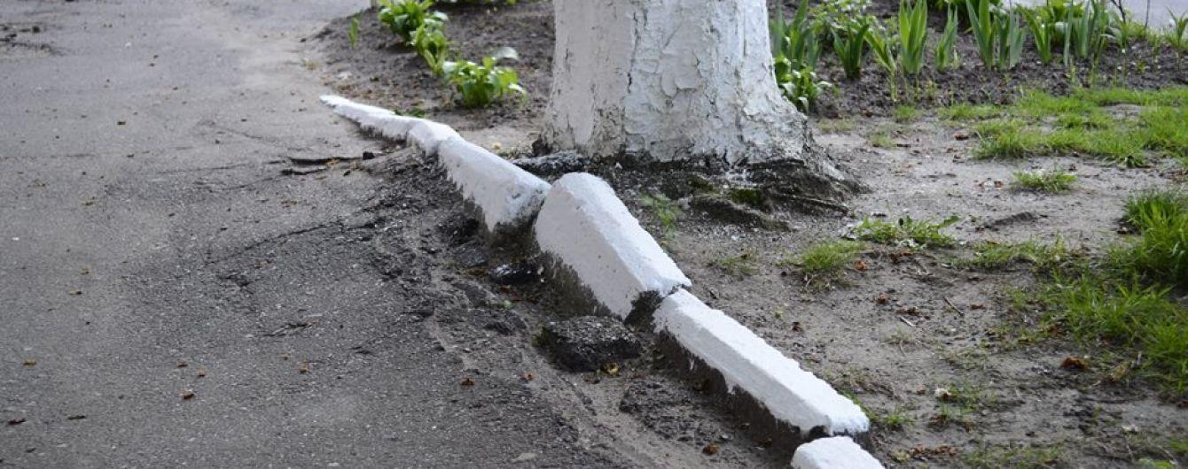 В Ивано-Франковске будут штрафовать за сезонную побелку бордюров