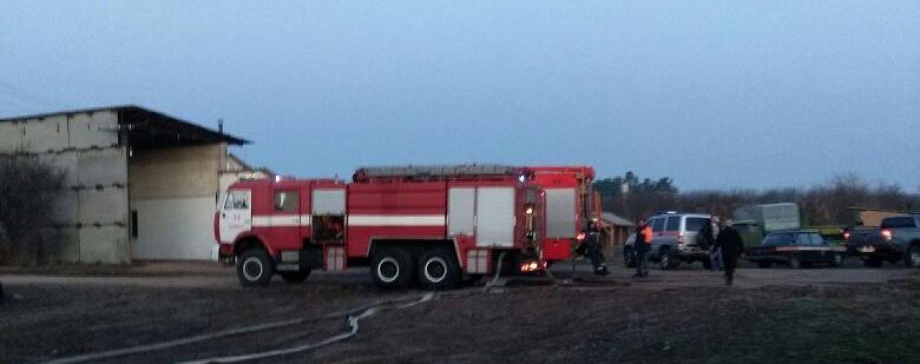 На Киевщине в пожаре погибли четверо лошадей