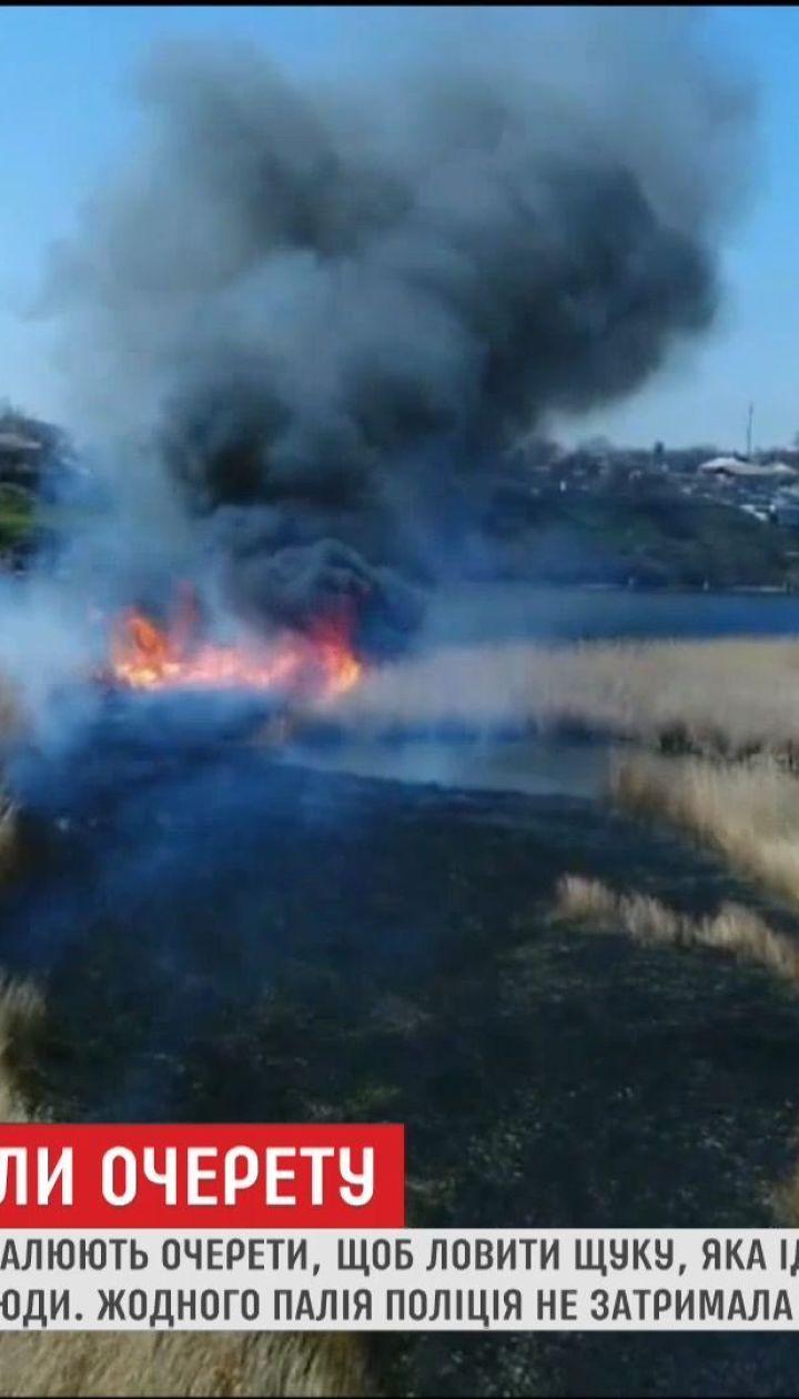 На Николаевщине сгорело 45 гектаров камыша
