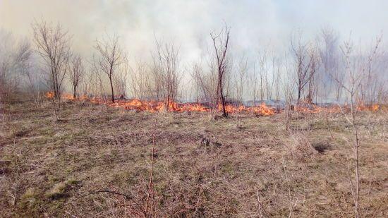 Синоптики попередили українців про найвищий рівень пожежної небезпеки на травневі свята