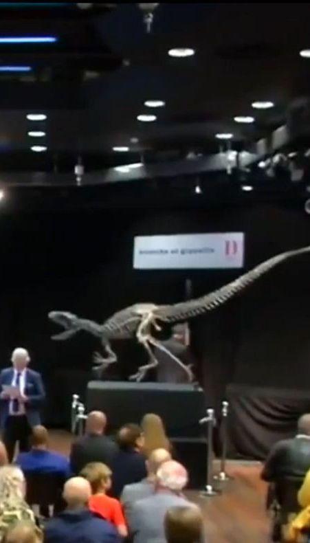На паризькому аукціоні продали два скелети стародавніх динозаврів