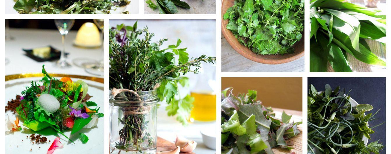 4 эффектных блюда из дикорастущей весенней зелени