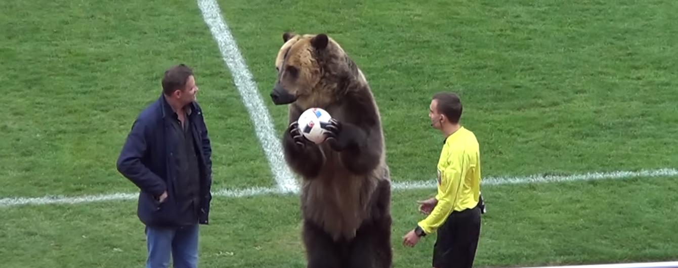 У Росії футбольний матч відкрив ведмідь