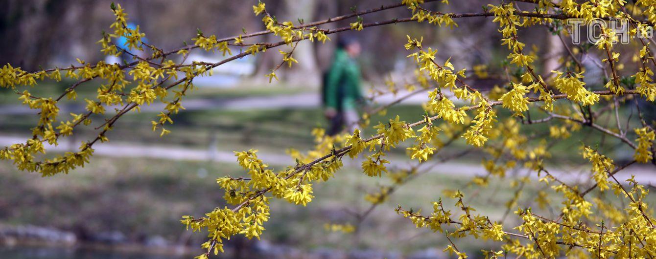 Дощі та заморозки. Синоптики попередили про похолодання в Україні