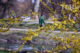 Дожди и заморозки. Синоптики предупредили о похолодании в Украине