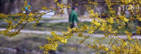 Майже літо на Прикарпатті та ймовірні дощі на півночі. Погода на 21 квітня