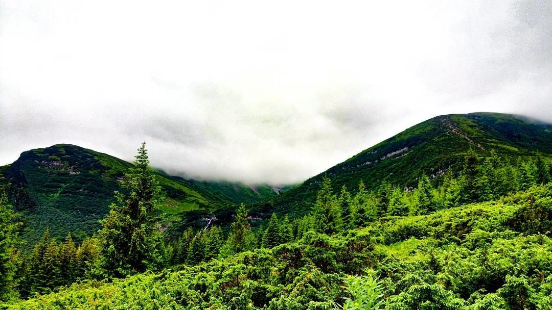 Гора Брецкул та Говерла, Карпати, гори