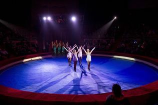 НАПК имеет претензии к директору цирка Днепра