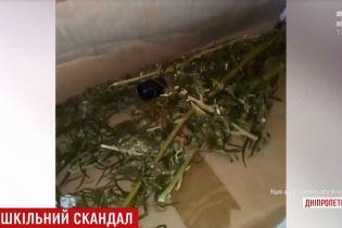 Діти знайшли в спортзалі школи на Дніпропетровщині сховок коноплі, котру педагоги негайно спалили