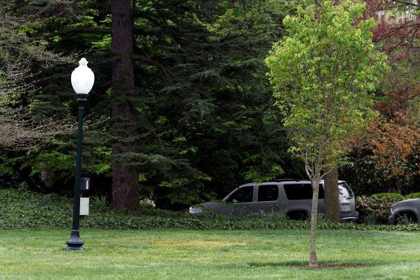 Згалявини Білого дому зник дуб, посаджений Макроном і Трампом