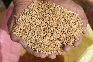Рада упростила налогообложение для семейных фермерских хозяйств