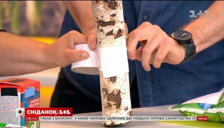 Как избавиться от тли на деревьях, рассказала Наталья Подлесная