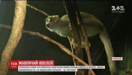 Мавпа-довгожитель з Миколаївського зоопарку може побити світовий рекорд