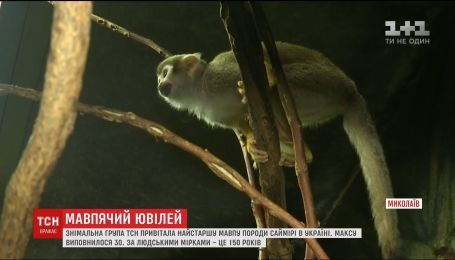 Обезьяна-долгожитель из Николаевского зоопарка может побить мировой рекорд