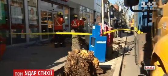 Ураганний вітер убив двох людей у Канаді