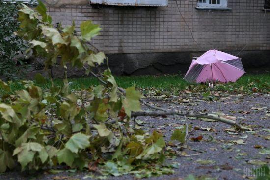 Негода в Україні: знеструмлено понад 200 населених пунктів у семи областях