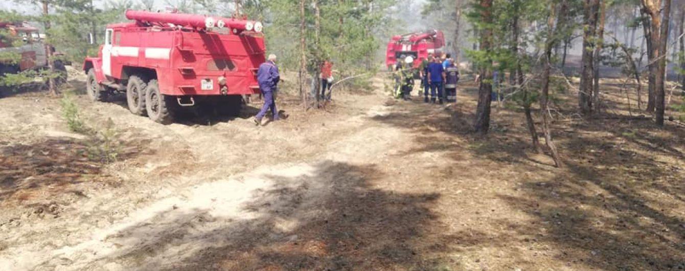 На Луганщині палає близько 5 гектарів лісу