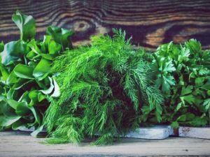 Як полюбити зелень і навіщо