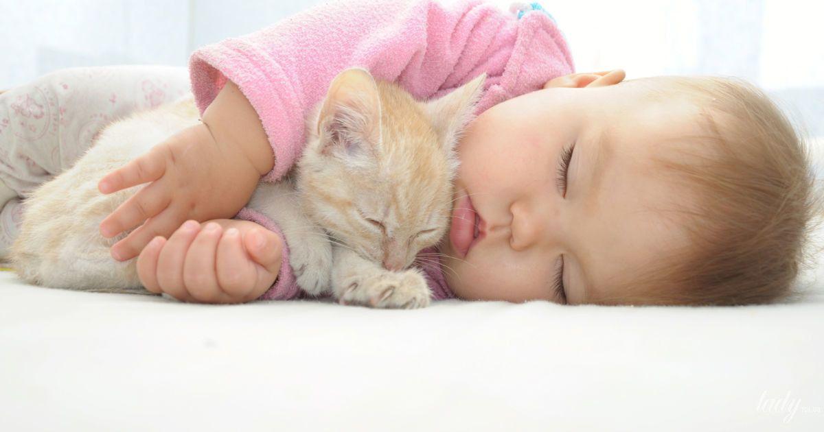 Что нужно выяснить, прежде чем завести ребенку животное