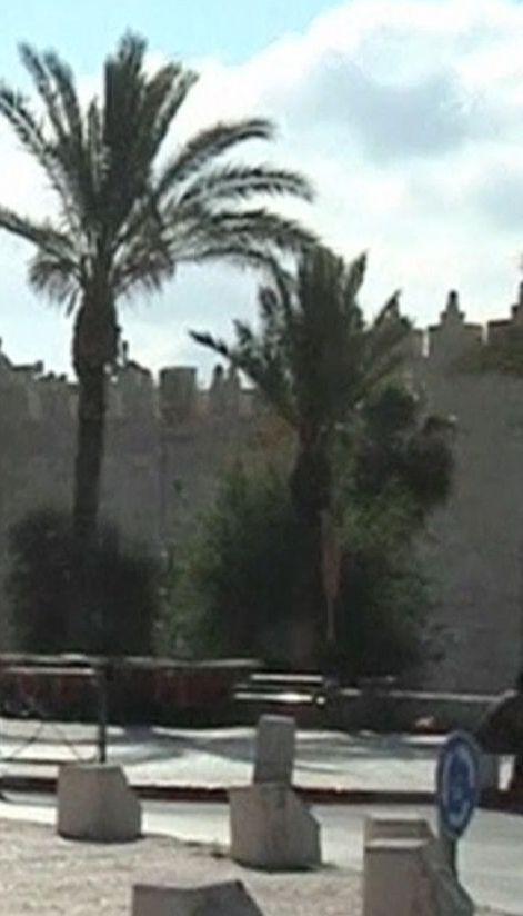 Палестинцы обещают массовые протесты из-за открытия посольства США в Иерусалиме