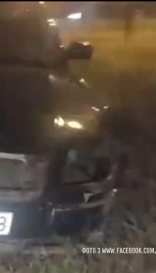 Водій через свого кота потрапив у ДТП