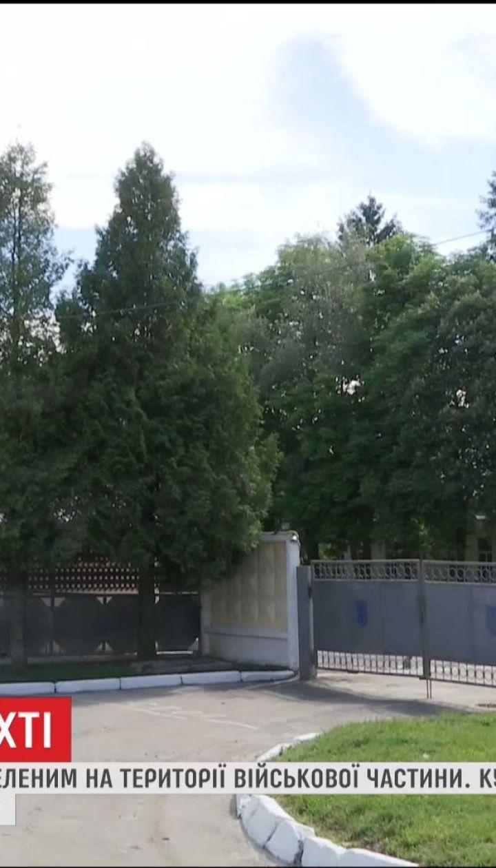 На Львівщині знайшли мертвого військового із двома вогнестрільними пораненнями