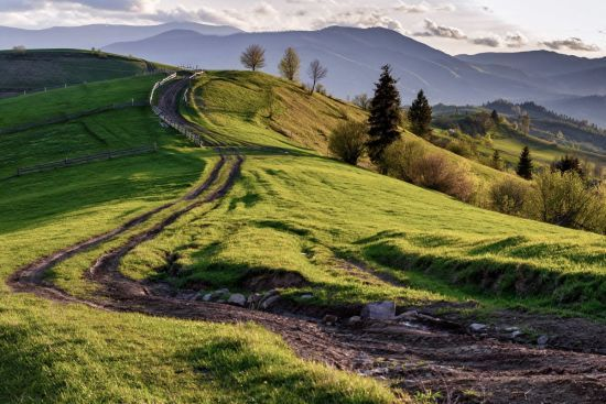 В Україні потепліє, буде сонячно, але періодично йтимуть дощі. Прогноз погоди на 23-27 травня