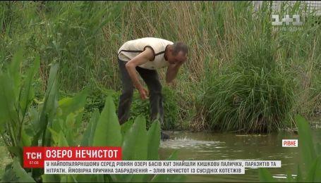 В озері Басів Кут знайшли кишкову паличку, паразитів та нітрати
