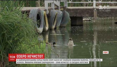 Кишечную палочку, паразитов и нитраты нашли в популярном среди ровенчан озере
