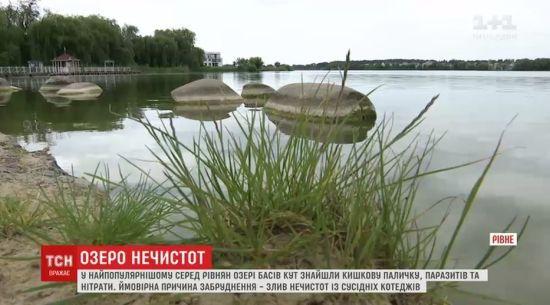 У Рівному найпопулярніше серед містян озеро забруднене фекаліями