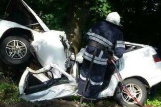 Під Вінницею авто вщент розбилося об дерево: двоє загиблих
