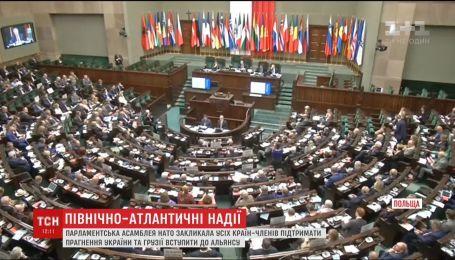 Парламентська асамблея НАТО підтримала українські амбіції щодо вступу в Альянс