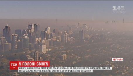 Сідней укрив густий чадний смог через спалення трави на околицях міста