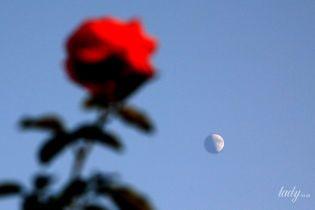 Позаботьтесь о себе сами: лунный календарь на июнь 2018 года