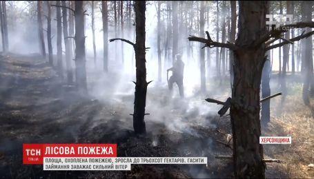На Херсонщине горят почти триста гектаров леса