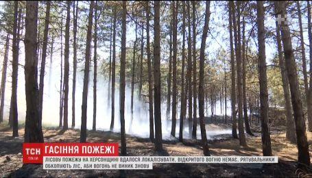 На Херсонщине удалось локализовать масштабный лесной пожар