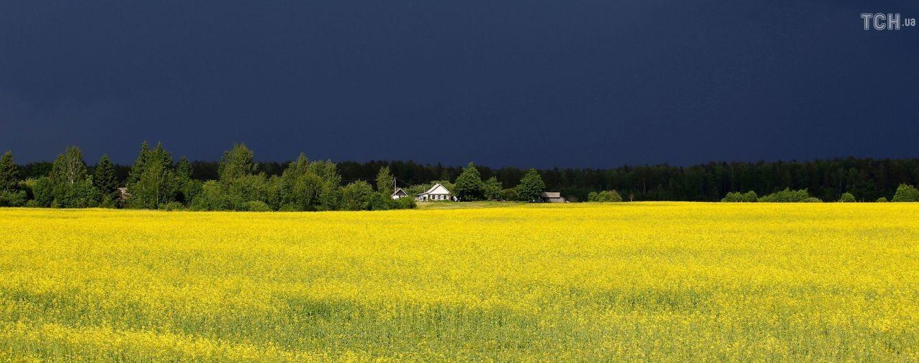 В Україні пройдуть грозові дощі. Прогноз погоди на 5 червня
