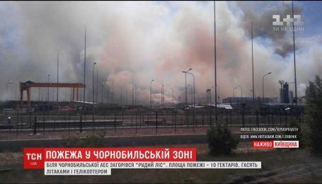 В Чернобыле загорелся радиоактивный Рыжий лес