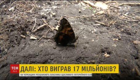 Бабочки заполонили Киев