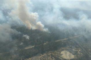 Спасатели до сих пор не могут локализовать огонь в лесу возле ЧАЭС