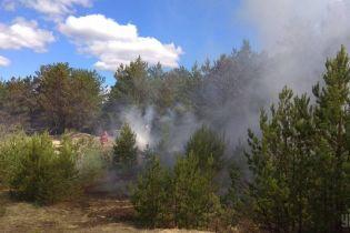 Рятувальники локалізували пожежу у Чорнобильській зоні